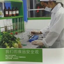 蔬果配送,餐廳承包圖片