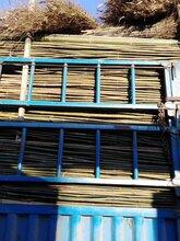 北安竹竿批发,扫竹,日用清洁工具,五金用品等批发零售