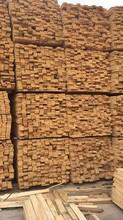 北京建筑木方批發出售木方圖片
