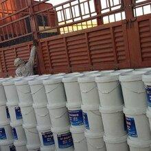 聚合物粘结砂浆粘瓷砖厂家图片