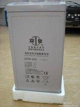 双登蓄电池GFM-300ups电源专用蓄电池特价包邮