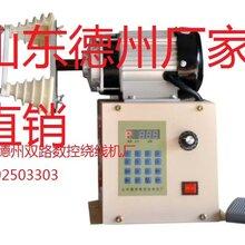 双路数控绕线机大型绕线机可绕315kw电机线圈图片