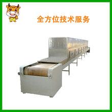 厂家直销冻牛肉快速解冻机/冻肉气泡式解冻机/全自动连续式解冻机