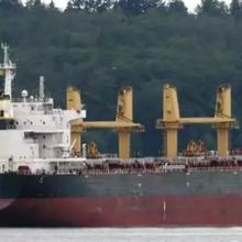 出售64000吨18年广东造外贸散货船图片