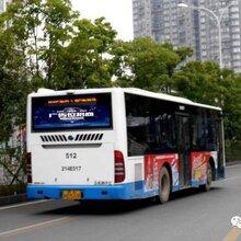 深圳物联网有限公司车后窗投影广告的优势?