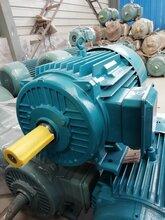電動機冷卻塔電機馬達金屬切削機電機價格環中宇YE2四級馬達立臥式電機Y2三相異步電機圖片