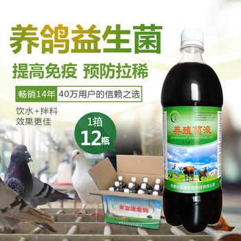 防治鸽子拉稀用的养殖益生菌在哪里能买到