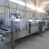 鹿茸速凍機SD-1500kg