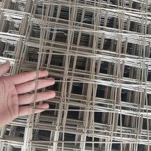 不锈钢电焊网现货供应,建筑网,养殖网,钢丝焊接网,墙体保温网