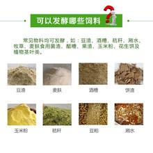 发酵玉米粉喂猪用哪种饲料发酵剂好图片