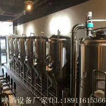 音乐餐吧自酿啤酒设备厂家免费酿酒技术培训啤酒设备免费安装图片