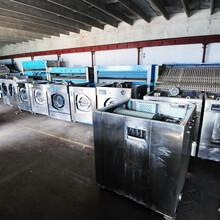 出售二手洗涤设备二手水洗机烘干机烫平机等图片