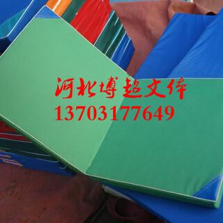 体育器材制造生产厂家图片2