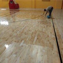 枫木柞木木地板体育运动木地板乒乓球室健身房舞蹈室木地板直营图片