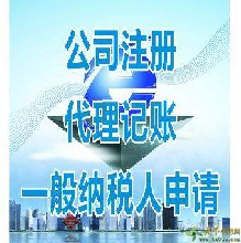 河南唐鼎财务专业代理记账公司注册