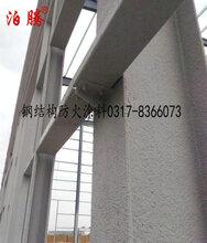 室内钢结构防火涂料大型实体厂家河北泊腾