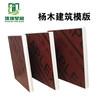 淄博木模板厂家三胺胶覆膜红模板一次成型星冠木业