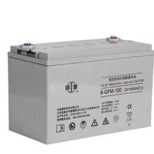 双登6-GFM-120铅酸免维护蓄电池12v120ah,UPS/EPS蓄电瓶正品