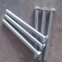 生產鍍鋅螺栓圖片