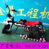 电动滑草车