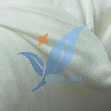 CFR1633玻纤衬布BS5852阻燃衬布海绵床垫专用图片