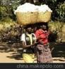 约翰迪尔采棉机便携式采棉机手提式采棉机卡瓦斯采棉机