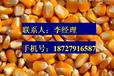 李先生长期收购玉米大豆小麦棉粕菜粕麸皮油糠花生绿豆