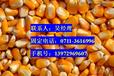 吴经理求购玉米、越南木薯淀粉