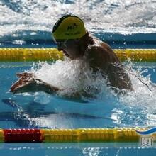福田体育馆学游泳找张教练,专业游泳私教
