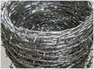 刺绳厂家直销镀锌包塑带刺铁丝网、铁蒺藜养殖林场围网铁丝网