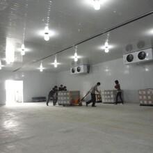 淮北食品厂冷库建造价格多少钱