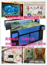 浪漫个性油画艺术背景墙打印机3D地砖瓷砖打印机装饰行业必备万能机器图片