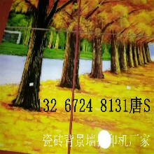 广东瓷砖背景墙5d打印机价格表厂家质量怎么样?图片