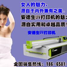 大型密度板印花机价格?图片