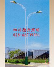 绵阳LED路灯定制厂家-四川德升照明