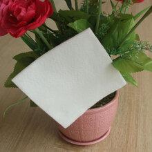 供应PET聚酯纤维鲜花吸水棉图片