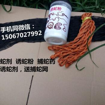 诱蛇粉诱蛇剂捕蛇药(买就送捕蛇网)
