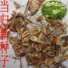 贵阳花卉种子蔬菜种子药材种子草坪种子林木种子果树种子批发