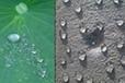 西青渗透性透明防水剂厂家囍-热销-囍