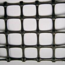 吉林塑料土工格栅非标200g厂家直销