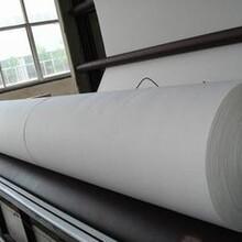 养护用土工布低价处理200g高品质白色短丝土工布