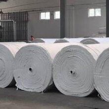舟山市土工布生产厂家低价供应200g国标土工布图片