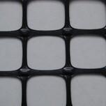 双向塑料土工格栅价格低的厂家供应TGSG双向20KN图片