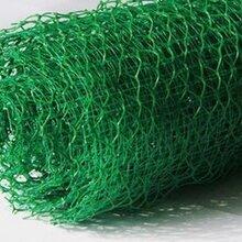 三维植被网价格低质量好厂家图片