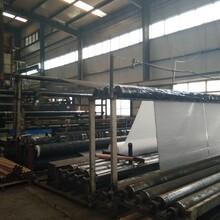 陕西咸阳市钢塑土工格栅厂家直销GSZ20-100KN钢塑土工格栅图片