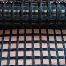 广西百色市钢塑土工格栅厂家直销GSZ20-100KN钢塑土工格栅图片