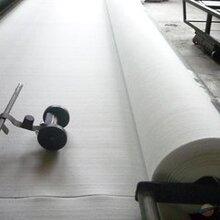 安徽滁州短丝土工布价格图片