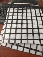 甘肅平涼玻纖格柵復合土工布價格圖片