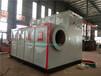 林芝洗涤厂蒸汽锅炉