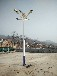 石家莊太陽能路燈,石家莊路燈廠家